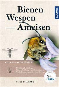 Bienen-Wespen-Ameisen