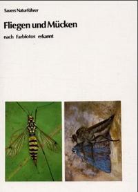 Fliegen-Mueckenjpg