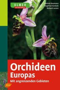 Orchideen-Europas