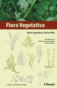 Flora-Vegetativa